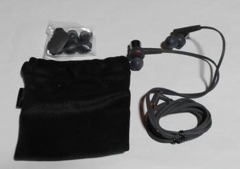 EarP03.jpg