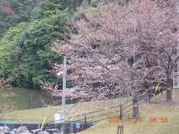 Toyooka247.JPG