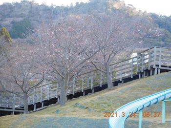 Toyooka253.JPG
