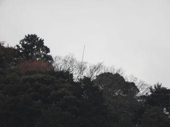 Toyooka268.JPG