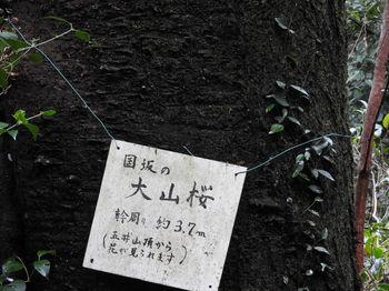 Toyooka289.JPG