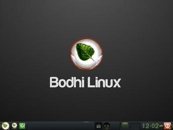 VirtualBox_BodhiLinux4J_01_11_2016_00_02_35.jpg