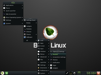 VirtualBox_BodhiLinux4_29_10_2016_20_08_50.jpg