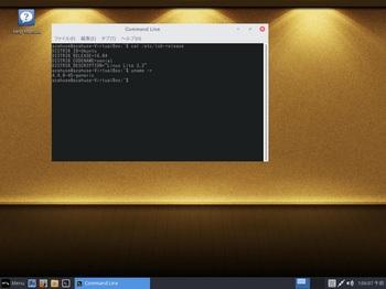 VirtualBox_LinuxLite32_01_11_2016_01_06_08.jpg